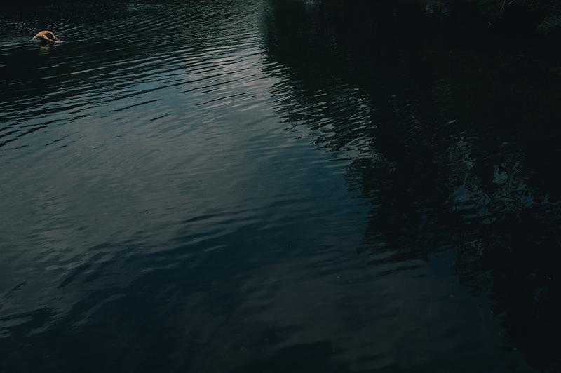 Wildswimming4